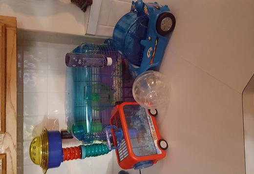 Hamster, cage and travel cage and car